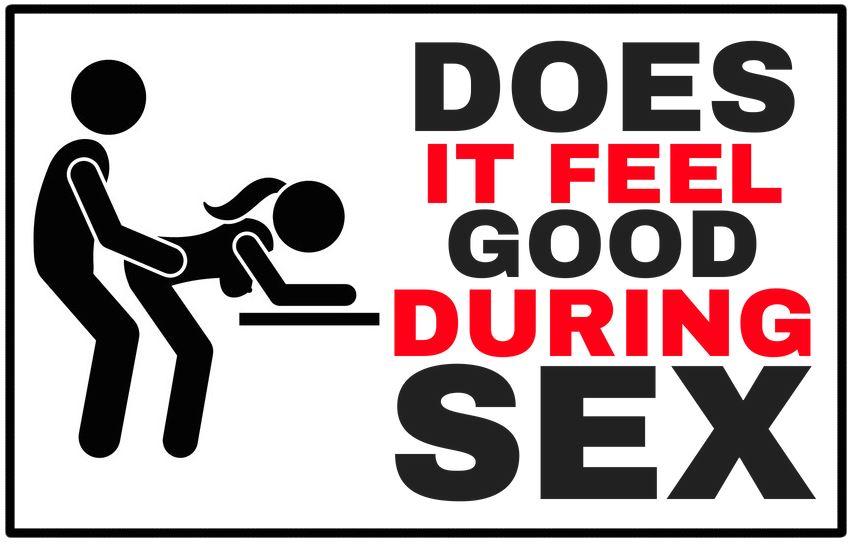 cartoon having sexual intercourse